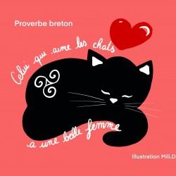 Carte amour de chat