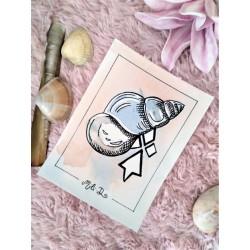 Carte coquillage bulot